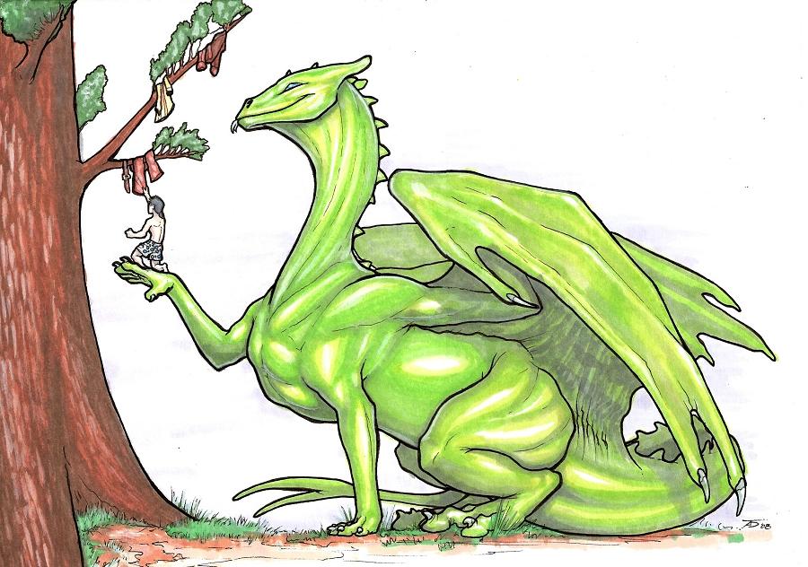 http://fc09.deviantart.net/fs29/f/2008/150/5/4/In_A_Tree__by_KaiserFlames.jpg
