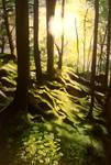 Forest by xxsensi