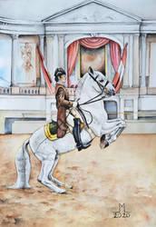 Horse Wild/Trained by xxsensi