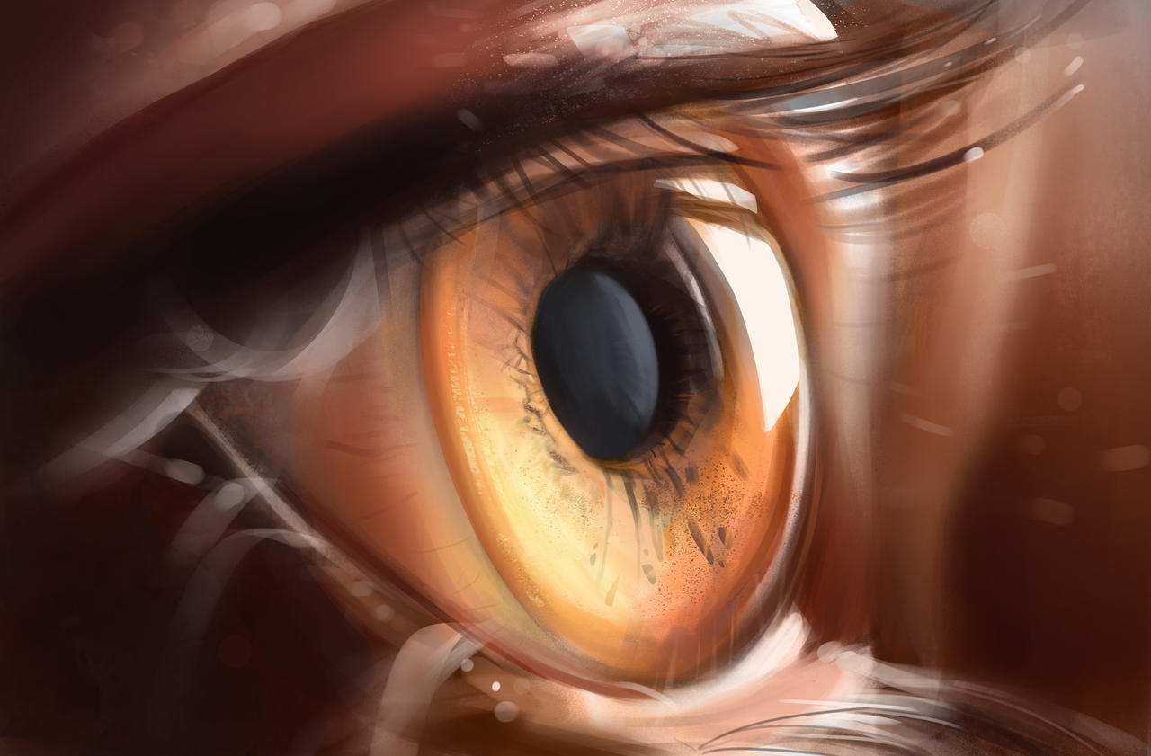 Study-Eye