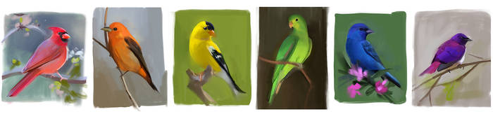 Bird Studies by GabrielleBrickey