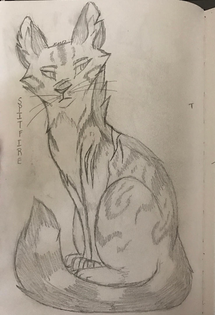 Spitfire *Sketch* by Fireleopard03