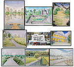 LandScape Artist Of The Year Collage