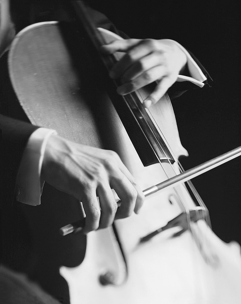 Pictures Of Cello Wallpaper Iphone