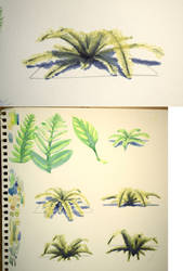 #498 - Watercolor Fern Study by RodentNomNom