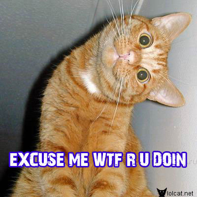 Curiosidades Y Bromas. Lol_cats_by_JokersXHarley
