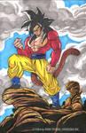 Goku fase 4.