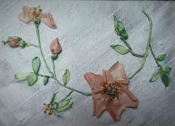 tender roses by Ebenholz