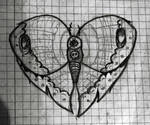 Buterfly heart tattoo drawing