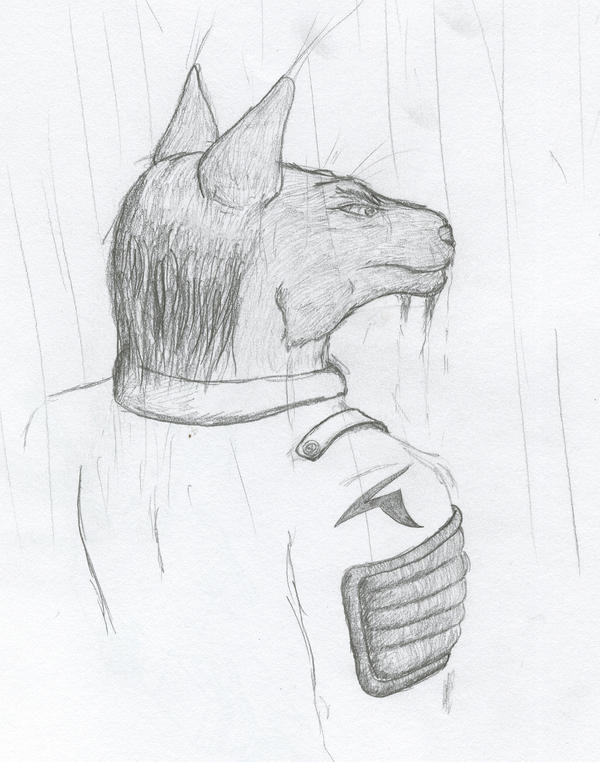 Raining by Jarndahusky