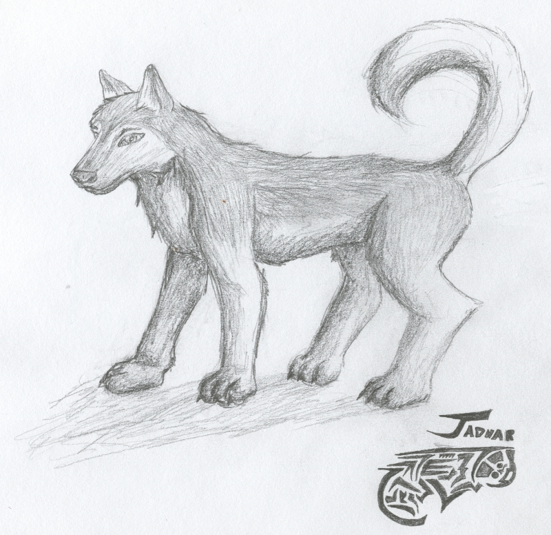 Jadnar the Husky by Jarndahusky