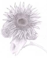 Sun flower by me by Jarndahusky