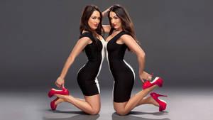 Bella Twins Black and White 2