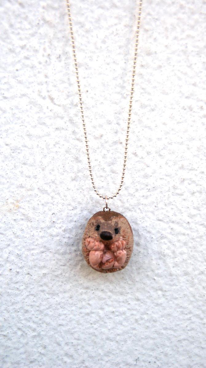 Hedgehog by polgabice