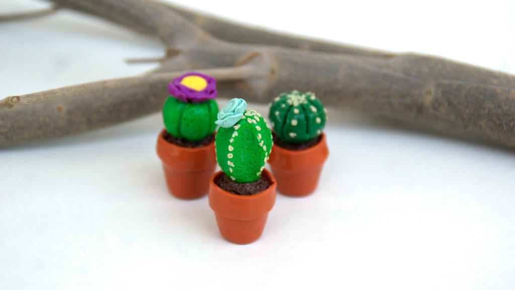 Miniature cactus pots by polgabice on deviantart Cactus pots for sale