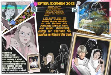 Darth Vaders Comission