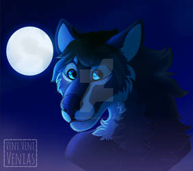 It's a Full Moon out Tonight