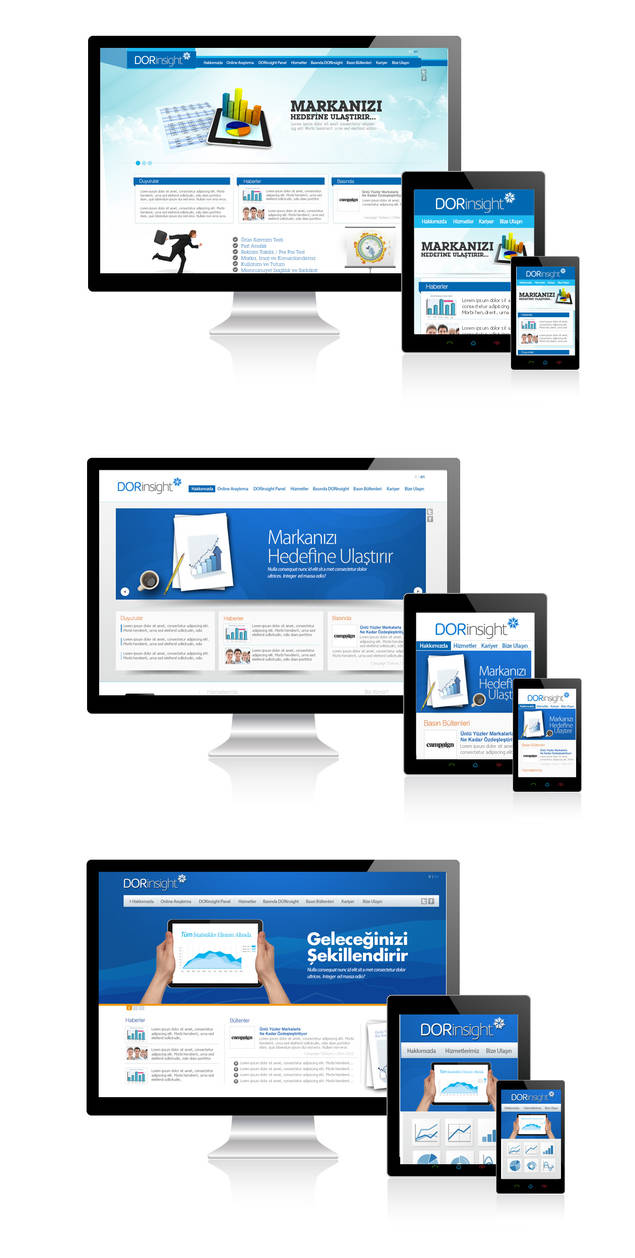 Dorinsight web design