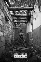 Blackandwhite by libertinagestudio