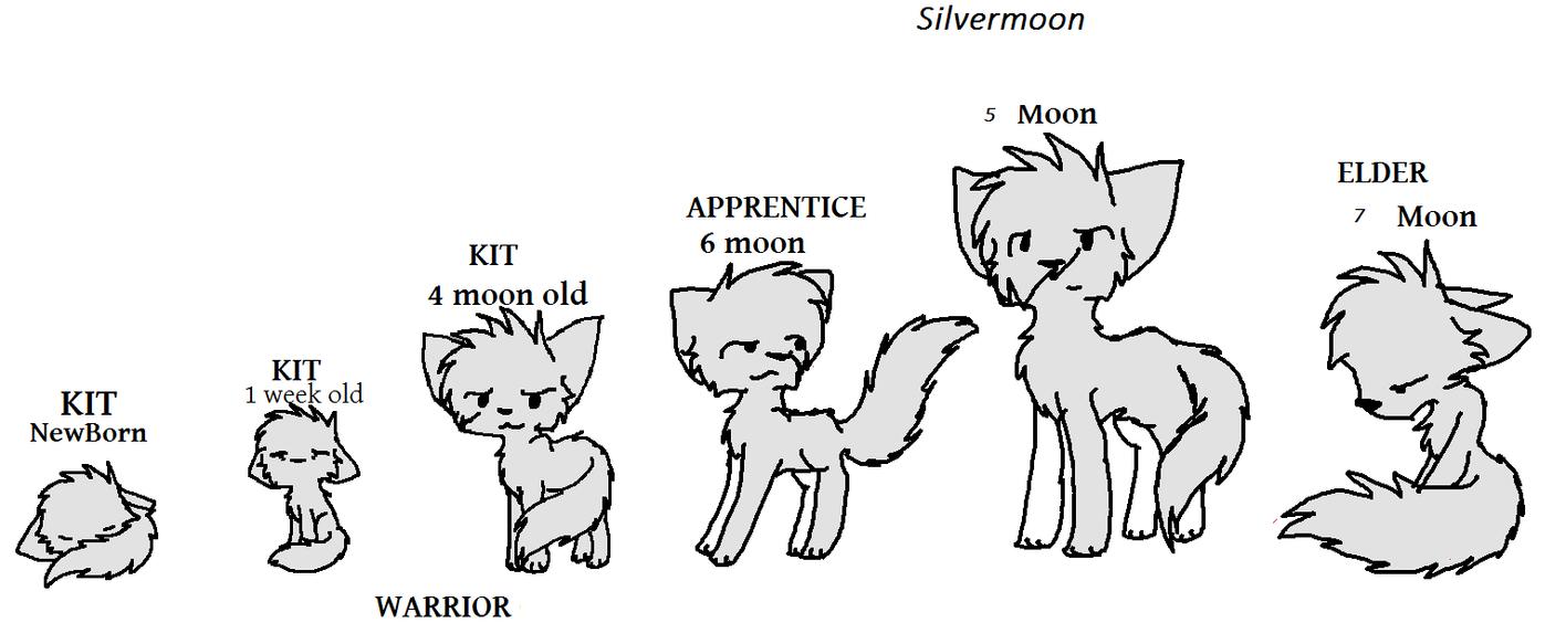 Anime Cat Clan Base