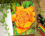 Rose - The Sketchbook Project by FrettchanStudios