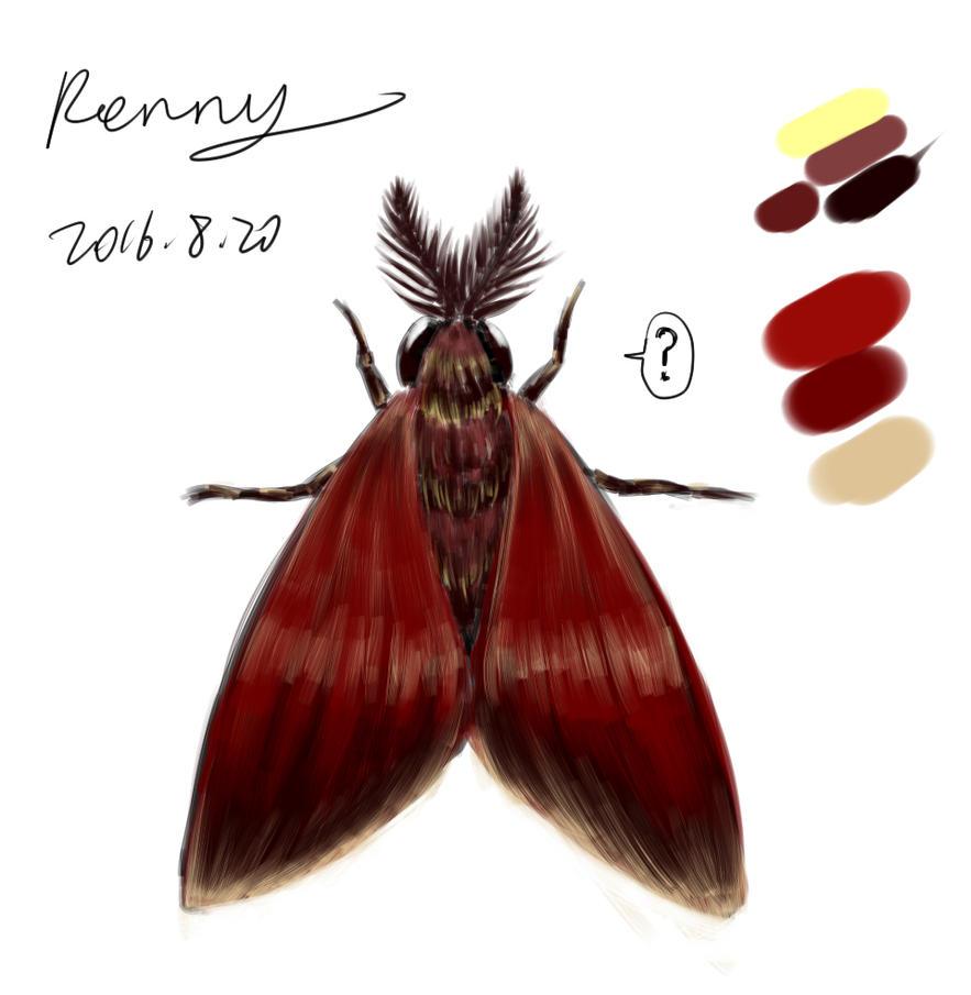 Moth by Renny1998