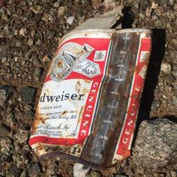 Again, more littered tin...