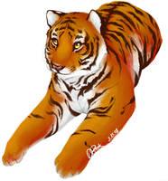 Tiger by Wabbits
