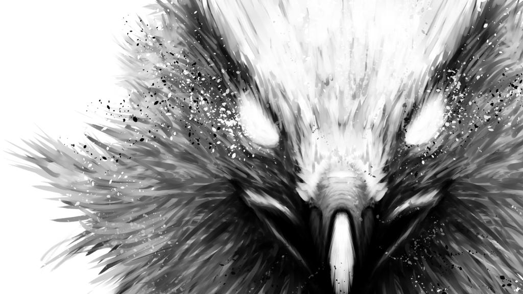 The Hawk Wallpaper 1366x768 by FuShan on DeviantArt