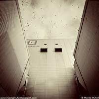 ptaki by BreathOfIndustry