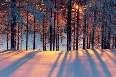 The Shadow of Light by Kvartsiitti