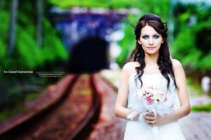 Wedding  12 by emekuc