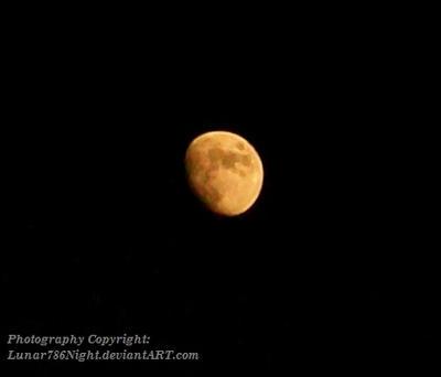 Golden Night by Lunar786Night