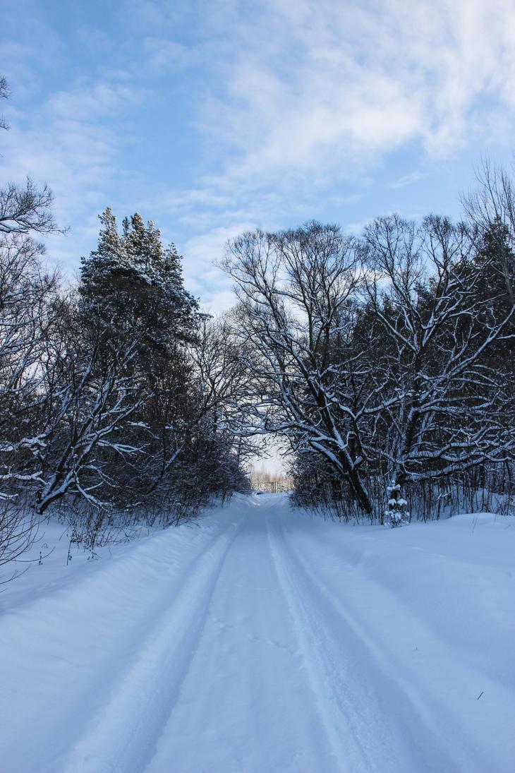 Winter road by OlgaCherkasova