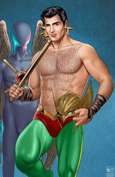 Clint Walker as Hawkman