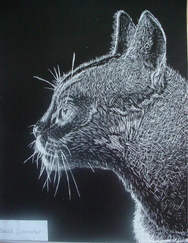 Scratch Art Cat By BooBooKachoo