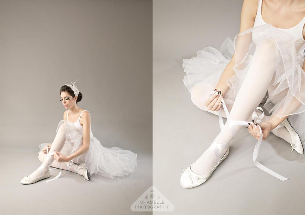 Black Swan White Swan by chamellephoto