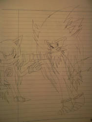 magnum vs metal sonic by shadowthehedgehogzx