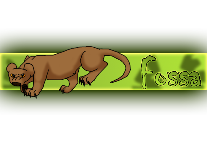 Fossa by RIOPerla