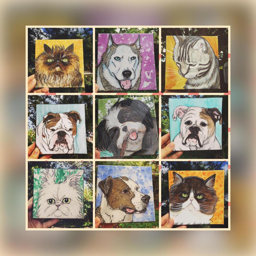 6x6 pet portraits  by CreativePotPie