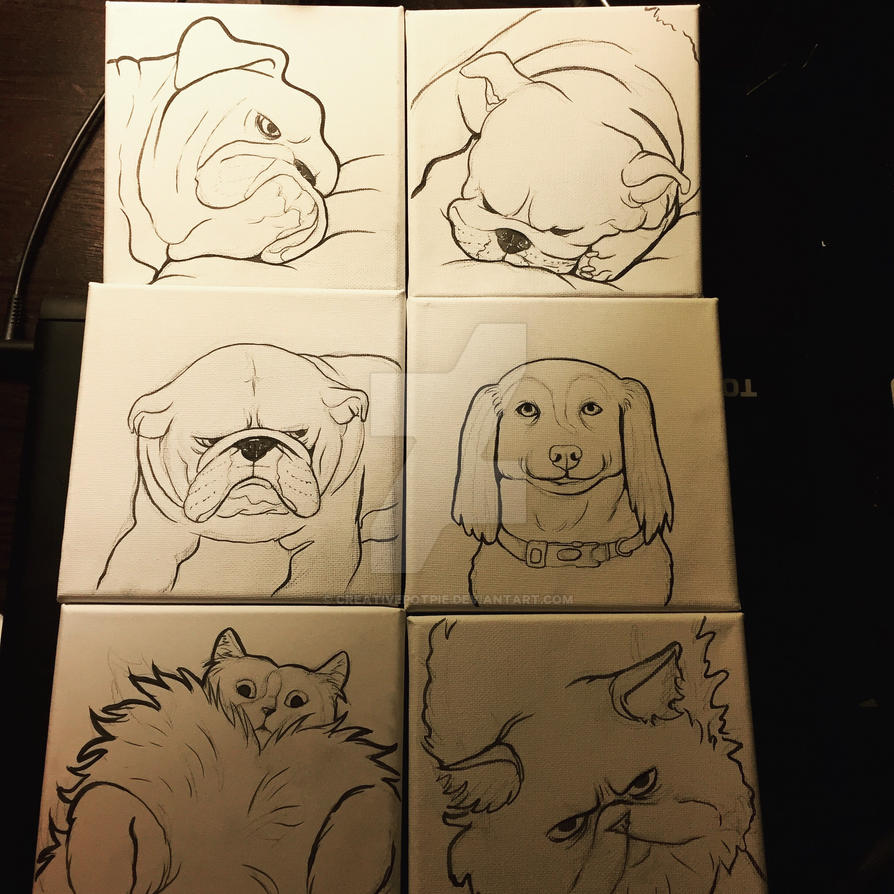 Pet portrait lines  by CreativePotPie