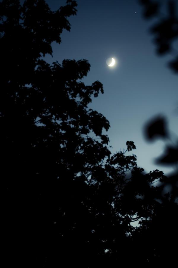 The moon by MiniMonkey