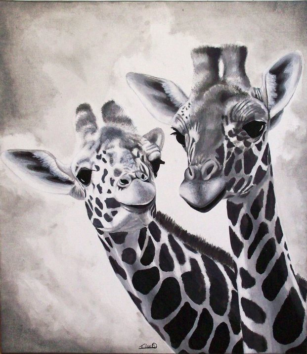 Giraffe Black And White Painting Acrylic Nature By Ilse S