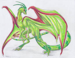 December 16th 2012: Flygon by UltimateSassMaster
