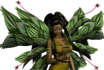 Faery collection - n 7a