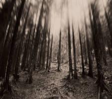 Lost Illusions by JonhyBlaze