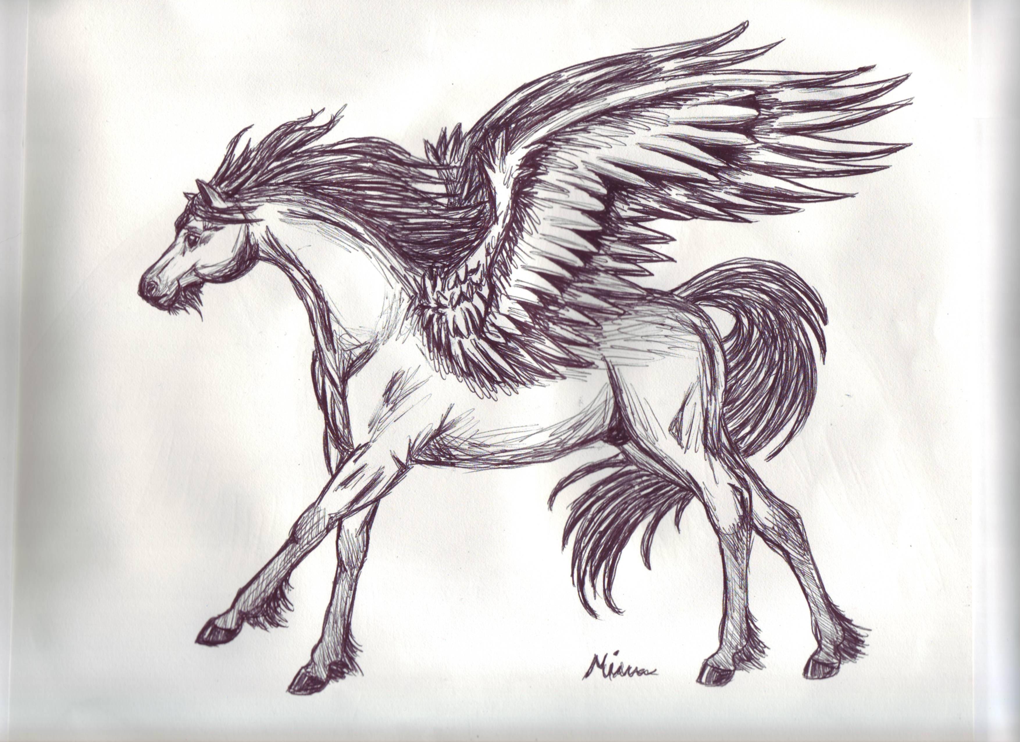 Uncategorized Drawings Of Pegasus pegasus sketch 2 by spiritwings on deviantart spiritwings