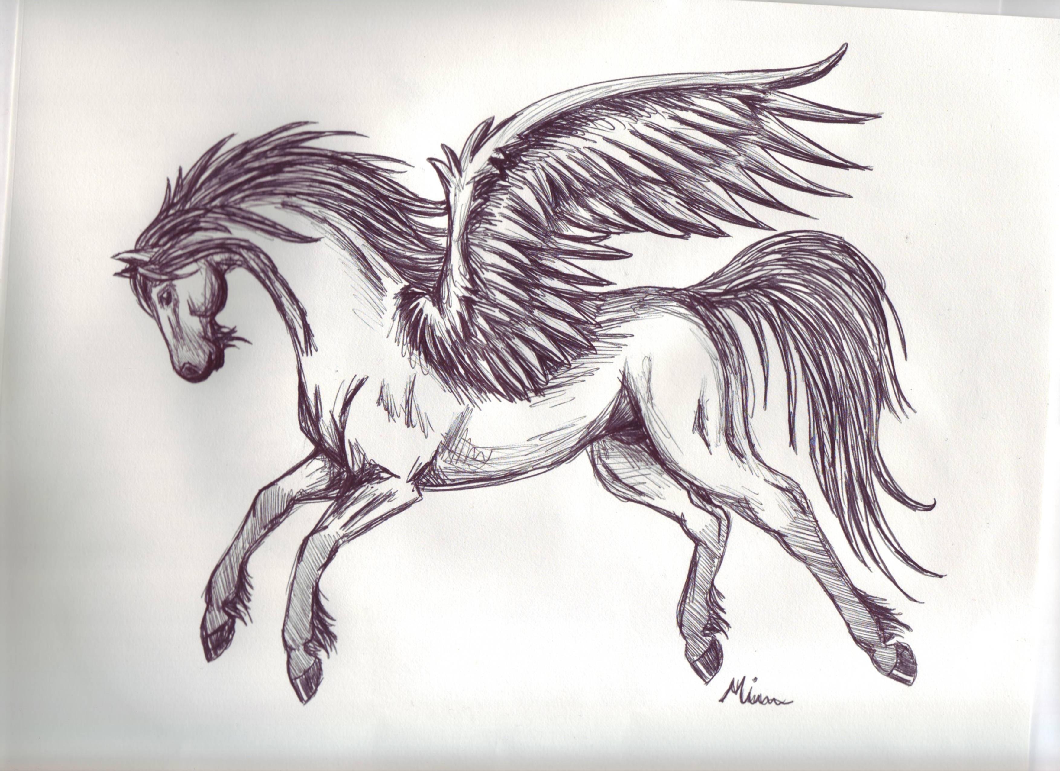 Uncategorized Drawings Of Pegasus pegasus sketch 3 by spiritwings on deviantart spiritwings