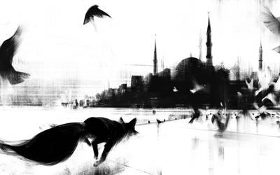 Fox - Istanbul by jamajurabaev