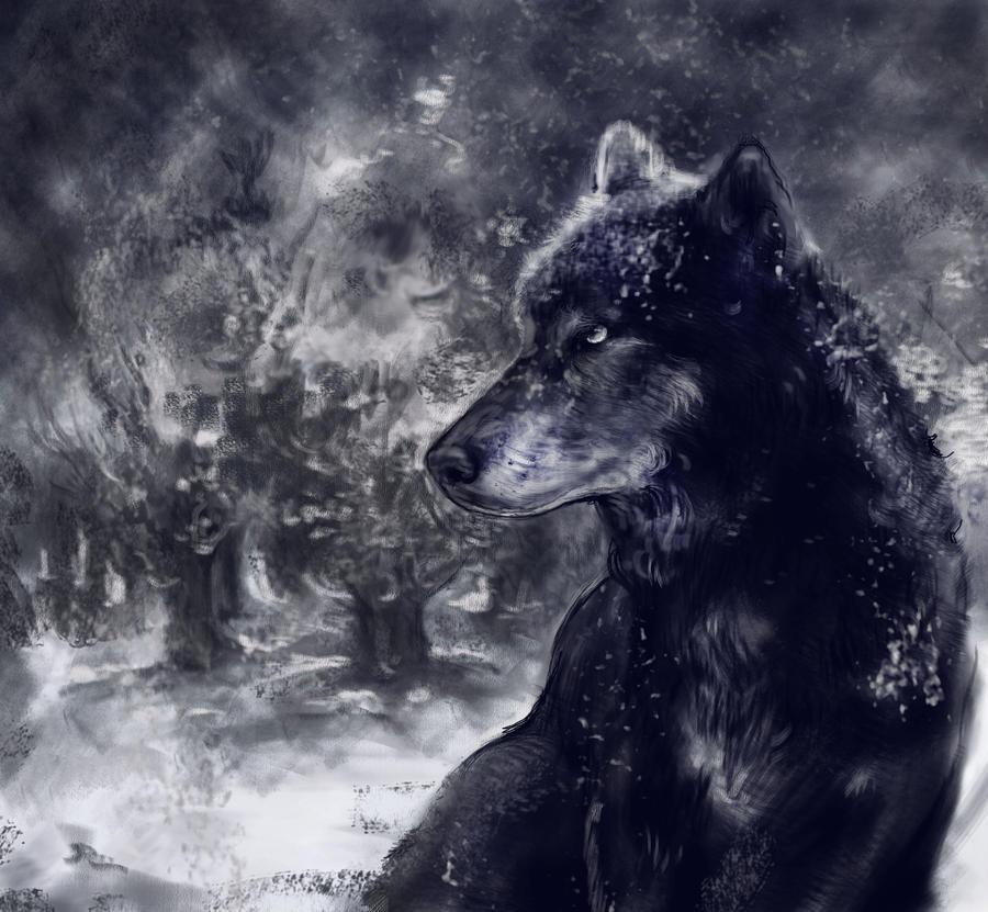 wolf 666 by ivonavasileva on deviantart. Black Bedroom Furniture Sets. Home Design Ideas